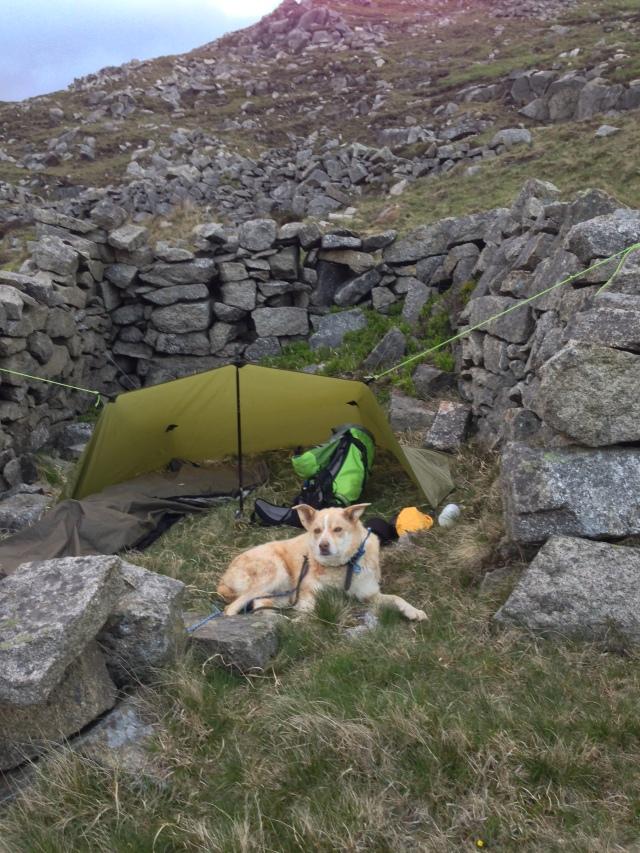 Bivi tarp camping